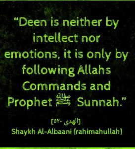 islamic quotes by sheikh albani