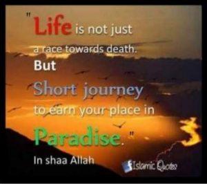paradise quotes in islam