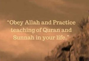 Obey Allah quotes
