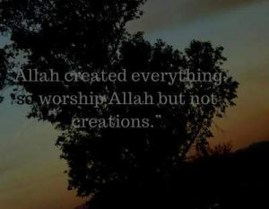 worship to Allah alone